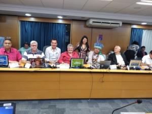 14/03/2019 - CNS debate efeitos da reforma da Previdência na saúde
