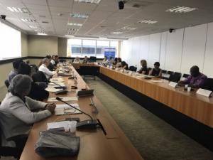 Presidente do Sintapi-CUT, Luizão, participa de reunião do CNDI, em Brasília